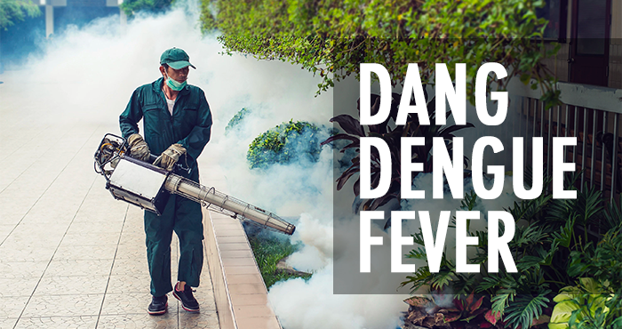 pr_dengue_1.png