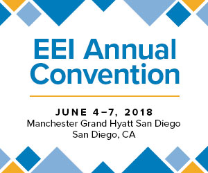EEI Convention