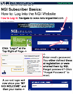NGI Onboarding: How to Log Into the NGI Website