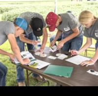 Diagnostic Crop Center competition