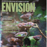 Envision cover