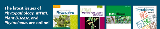 New Journal Issues Online