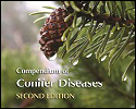 Conifer Diseases