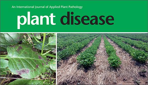 Plant Disease Has Record-Breaking Year!
