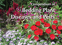 Compendium of Bedding Plant Diseases and Pests—Find the information you need to manage diseases, disorders, and pests on annuals from ageratum to zinnia!