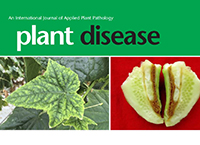 June issue of Plant Disease sets record with 372 pages! Thank you authors, reviewers, and editors!