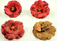 """Open access """"Petal Blight of Camellia"""" lesson just published in the APS Education Center."""