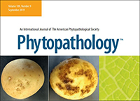APS division meeting abstract supplements have been posted in Phytopathology.