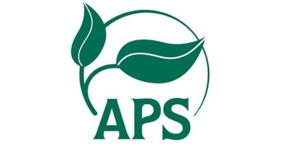 Nominate APS Council