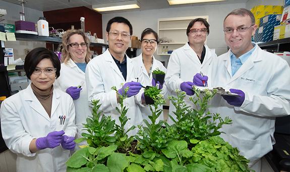 OPSR Plant Pathology Experiential Awards