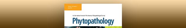 PhytopathologyBanner.jpg